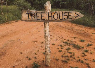 The treehouse at Luara Wildlife