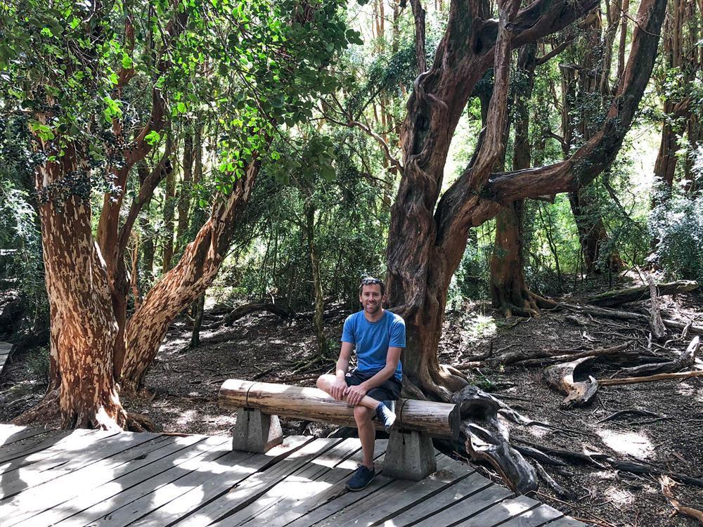 Bariloche hike